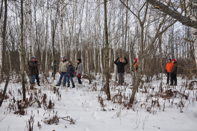 People in birch forest at Lone Pine Marsh.